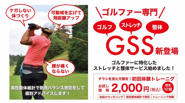 golf-seitai